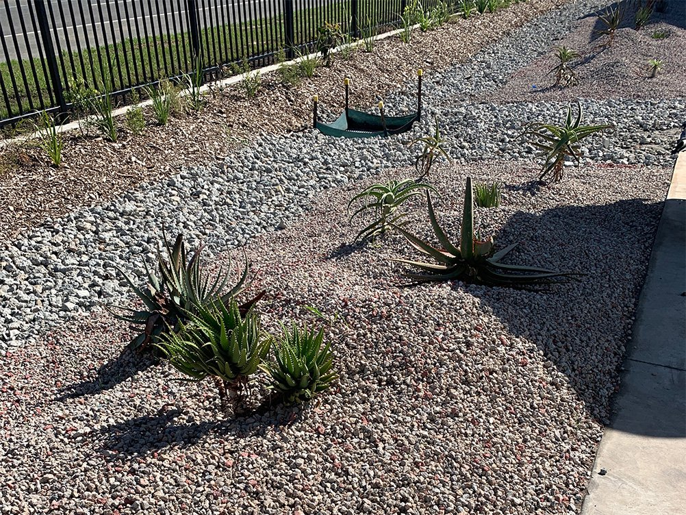 Garden bed uses recycled concrete aggregate for mulch and decoration