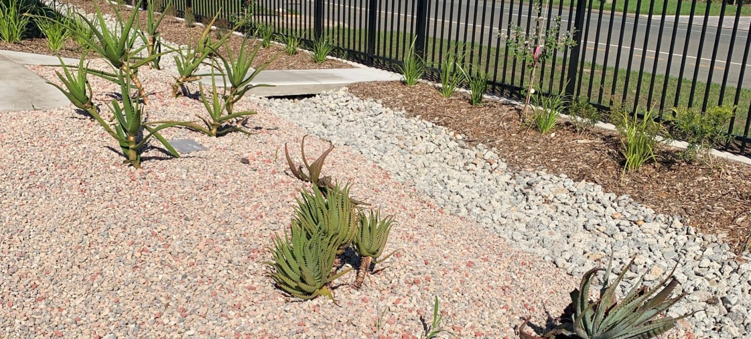 Recycled concrete aggregates used as mulch.
